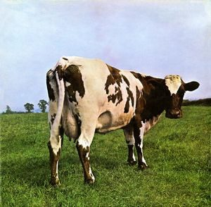 atomheartmothercover